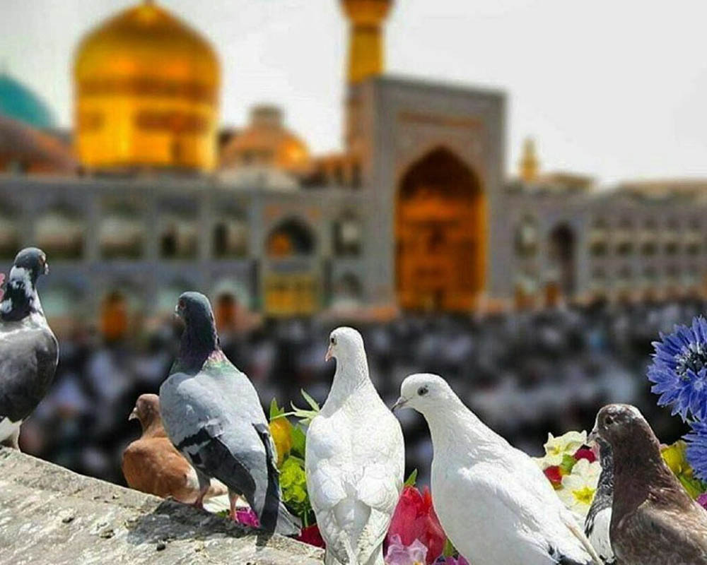 سفارش گل در مشهد